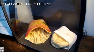 Capture d'écran de la vidéo en ligne de la décomposition d'un burger et de frites McDonald's au Snotra House, une maison d'hôtes à Thykkvibaer (Islande).