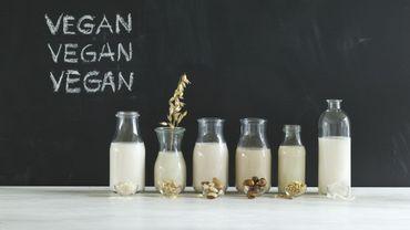 Quels laits végétaux pour remplacer le lait de vache?