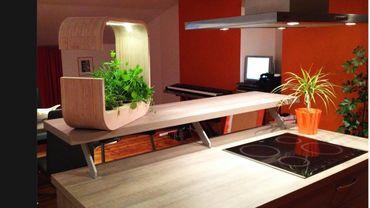 Trois jeunes étudiants liégeois créent un jardin d\'intérieur ...