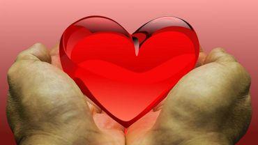 Ce dimanche, les citoyens de 400 communes wallonnes sont invités à se déclarer donneurs d'organes.