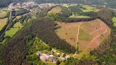 Découvrez le Mont-des-Pins  dans la région de Durbuy