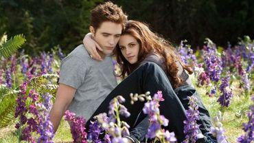"""Twilight 5"""