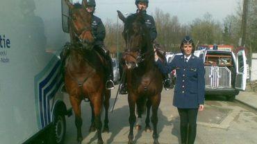Zone de police Bruxelles-Nord: patrouille à cheval