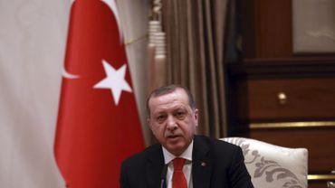 Erdogan entend utiliser la voie diplomatique pour renforcer son poids international