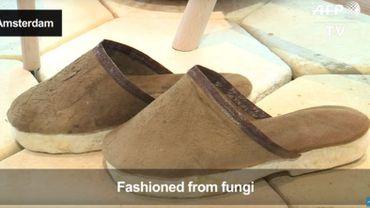 Faire pousser des objets comme des champignons. Et remplacer le plastique? (vidéo)