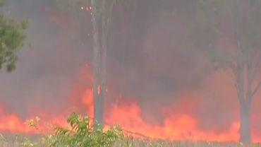 Australie: une centaine d'incendies simultanés font rage dans l'est