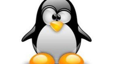 """Le petit manchot Linux passe par la """"fenêtre"""""""