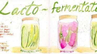 La lacto-fermentation c'est si simple! Démonstration avec du chou chinois!