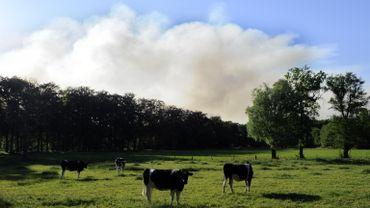 Dans la région de Frasnes, plus de 140 agriculteurs sont affiliés au Service de Remplacement Agricole