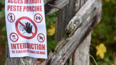 Les sentiers en forêt gaumaise bientôt rouverts aux promeneurs
