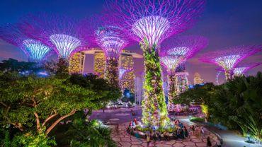 Les résidents de Singapour ne craignent pas de se faire attaquer la nuit