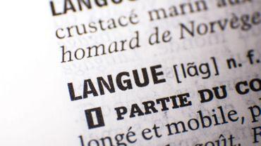 Le français évolue de jour en jour par l'utilisation de nouveaux mots dans nos conversations.