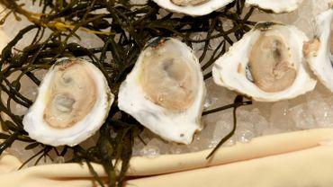 Les mollusques vivants ne se conservent que de deux à trois jours au frigo.