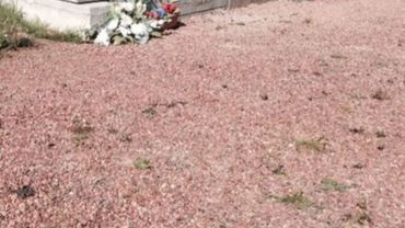 La commune de Amay lance un appel à la population pour désherber les cimetières