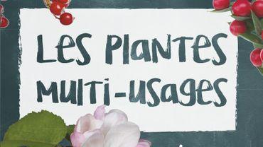"""""""Les plantes multi-usages"""" de Bärbel Oftring, publié le 1er mars aux éditions Delachaux et Niestlé."""