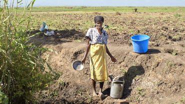 Les depossédés: les paysans face à la crise alimentaire dans le monde