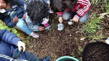 Vingt-neuf écoles bruxelloises se lancent dans un projet zéro déchet