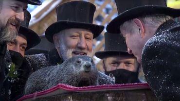Phil, la Marmotte américaine prédit une prolongation de l'hiver