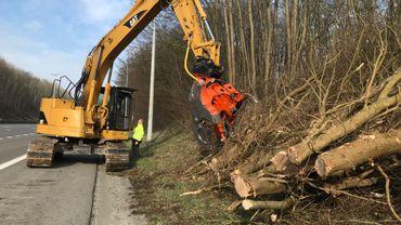 C'est une sorte de sécateur géant de 26 tonnes qui sectionne les troncs et les branches. Des déchets qui seront ensuite broyés le long de l'autoroute par une autre équipe, avant d'être expédiés vers une centrale de cogénération.