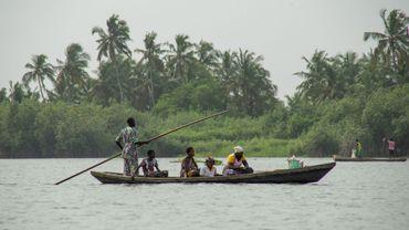Les universités belges au secours des mangroves, un écosystème en péril