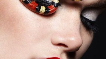 Snakes Fashion World