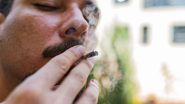 Selon une enquête, les consommateurs de cannabis en connaissent mal les effets sur la santé.