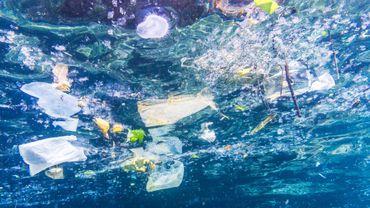 Au milieu du Pacifique, l'île Henderson, paradis perdu par le plastique