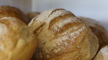 L'entreprise, qui va générer quelque 120 nouveaux emplois dans la région, produira quotidiennement 600000 pains et pâtisserie.