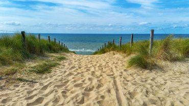 N'allez pas à la côte ou en Ardenne ce week-end !