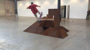 "Raphaël Zarka, ""Riding Modern Art"""