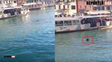Un jeune migrant se noie à Venise dans l'indifférence et les insultes