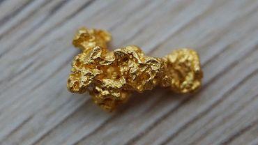 """Des bactéries qui permettent de recréer de l'or """"pur"""""""