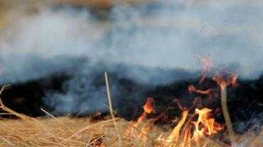 La fumée de feux de déchets verts est notamment un sujet de discorde entre voisins