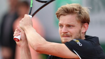 Goffin reste 9e d'un ranking toujours dominé par Nadal