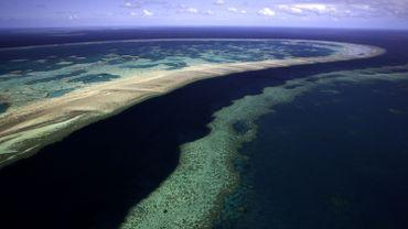 """Australie: les perspectives désormais """"très mauvaises"""" pour la Grande Barrière."""