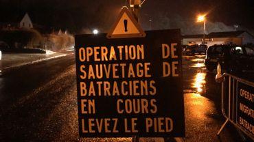 """Levez le pied quand vous verrez ce signal """"Attention sauvetage de batraciens"""" comme ici à Grand-Leez, à côté du terrain de foot, là où les grenouilles et les crapauds traversent la route pour rejoindre la mare."""