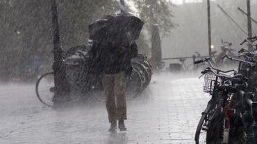 Climat: mieux anticiper le phénomène El Niño grâce à l'intelligence artificielle