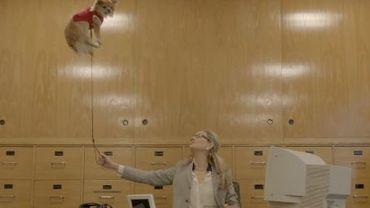 Problèmes de gravité au bureau dans le clip de Disclosure