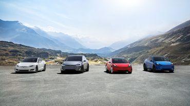 La famille Tesla à l'heure actuelle. Elle doit s'agrandir, mais quand ?