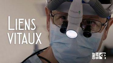 Liens vitaux, au cœur de la transplantation d'organes
