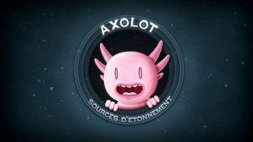 La mascotte d'Axolot est un animal étrange existant, l'axolotl.