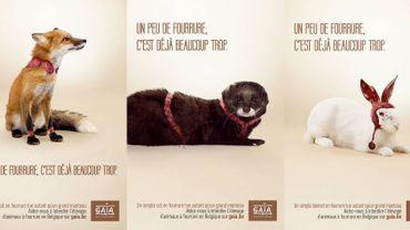 Une campagne de sensibilisation comme GAIA en a le secret.