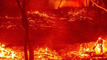 La Californie a connu des incendies particulièrement soutenus cette année.