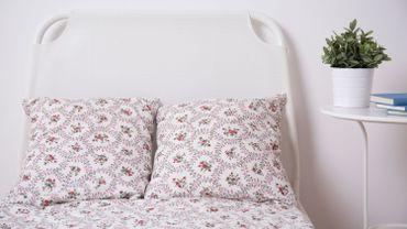 est il vraiment dangereux de dormir avec une plante dans sa chambre. Black Bedroom Furniture Sets. Home Design Ideas