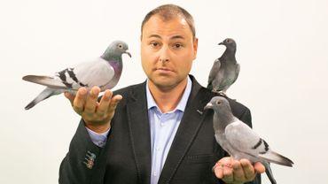 La rentrée des Pigeons sera riche en nouveautés !