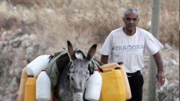 Un homme transporte de l'eau à dos d'âne dans un village de Cisjordanie