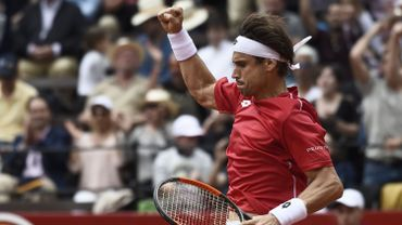 David Ferrer a mené l'Espagne vers une demi-finale de Coupe Davis.