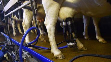 La production de lait de l'UE fortement réduite fin 2016