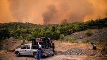 Au matin, les canadairs ont recommencé leur noria et déversé des tonnes d'eau sur la forêt qui brûle.