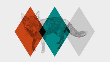 Namur poursuit sa collaboration avec l'asbl Z! pour le Verdur Rock 2016